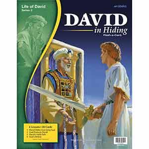 David in Hiding Flash-a-Cards