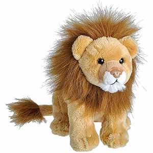 Wild Calls Lion