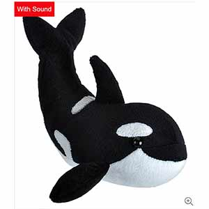 Wild Calls Orca Whale