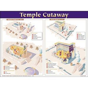 Temple Cutaway Wall Chart